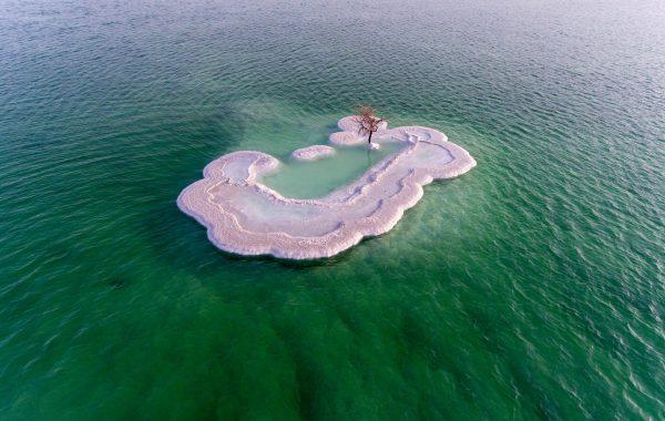 dode-zee-met-boom