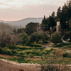 Jeruzalem tuinen en bergen